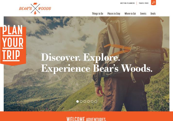 Bears Woods Theme